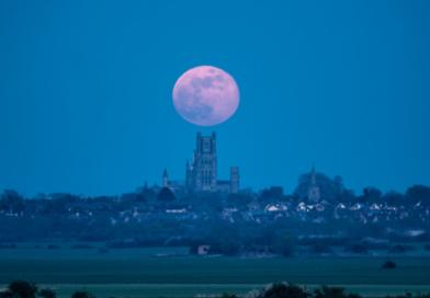Różowy Księżyc na niebie. Zobacz zdjęcia z wyjątkowej pełni